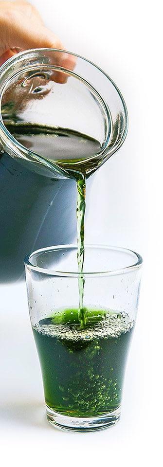 liquid_chlorophyll_dzban_bila_vpravo